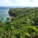 Récit de voyage en famille 1 mois à Hawaï : Kauai, Maui, Oahu, Big Island