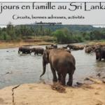 Récit de voyage en famille au Sri Lanka