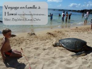 voyage itinérant à hawai en famille