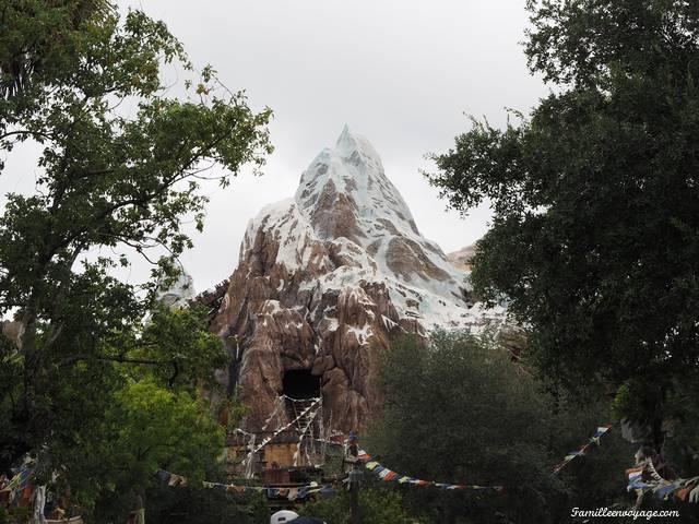 Everest Animal Kingdom