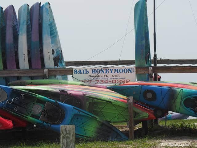 caladesi island floride kayak