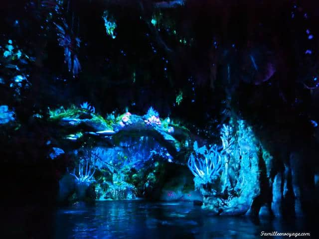 Avatar animal Kingdom
